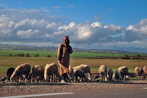 Tousnina Sarl - Argelia